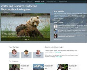 NPS - Bear