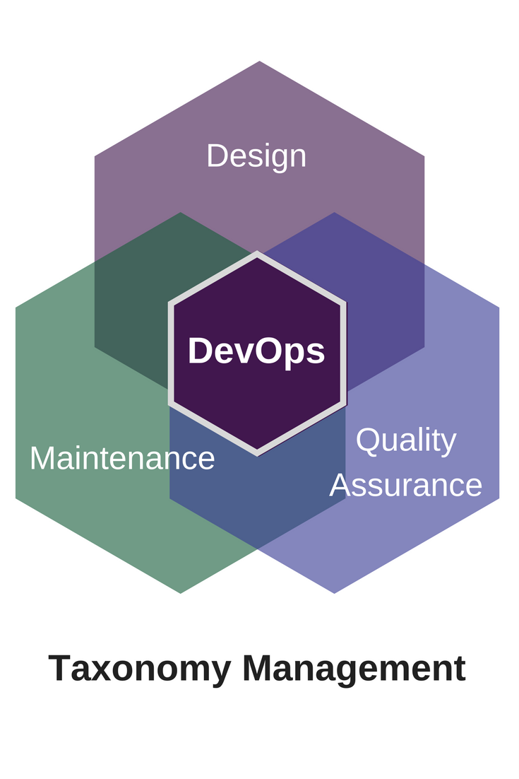 Agile Taxonomy Maintenance